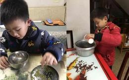 Mẹ nén giận đếm 10.000 hạt đậu cùng con nhưng khi nghe giáo viên giải thích thì lại vội xấu hổ