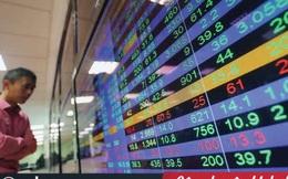 Có 300 triệu đồng, muốn đầu tư chứng khoán mà không có thời gian xem bảng giá thì phải làm sao?
