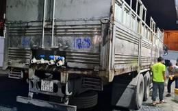Chưa được thông quan, doanh nghiệp tự ý mang 12 tấn cá tầm Trung Quốc đi tiêu thụ