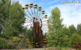 Tại sao bức xạ Chernobyl khiến động vật chết hàng loạt nhưng thực vật phát triển ngày càng tươi tốt?