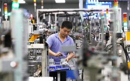Ngọn lửa 'thiếu chip' đã chính thức lan sang thiêu đốt ngành công nghiệp thiết bị gia dụng khổng lồ của Trung Quốc