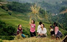 Bỏ phố về rừng với 2,5 tỷ đồng trong tay và không cho con cái đi học liệu có khả thi?