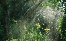 Bắc Bộ đề phòng mưa giông, lốc sét và mưa đá