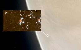 'Dấu hiệu của sự sống' được phát hiện trong những đám mây của sao Kim