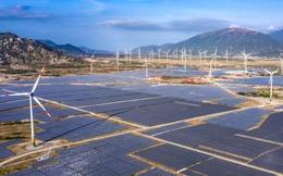 Ninh Thuận có tổ hợp năng lượng tái tạo 10.000 tỷ