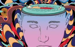 10 hiệu ứng tâm lý giúp 'đánh lừa não bộ' để xoay chuyển cuộc sống, biến nguy thành an: Nắm vững 1 điều cũng đủ yên tâm hưởng lợi cả đời