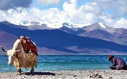 Người nước ngoài tới Tây Tạng du lịch nườm nượp nhưng ít ai dám ở lại quá lâu, vì sao?