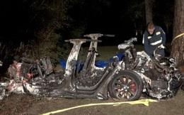 Mỹ: Xe hơi đâm vào gốc cây bốc cháy dữ dội, phát hiện điều giật mình sau khi dập lửa