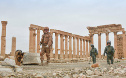 Nga không kích căn cứ khủng bố ở Syria, tiêu diệt 200 tay súng