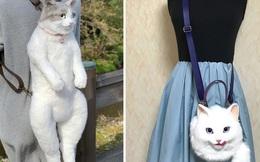 Balo mèo gây lú chiếm trọn trái tim netizen Nhật, giống thật tới nỗi hội mê mèo nhìn qua đã muốn xuống tiền mua luôn