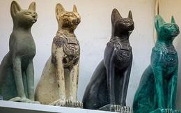 Tại sao người Ai Cập cổ đại lại tôn sùng mèo?
