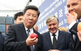 """Mỹ thỉnh cầu Bắc Kinh một chuyện quan trọng: Trung Quốc từ chối vì nước này vẫn là """"nước đang phát triển"""""""