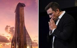 Elon Musk thừa nhận sững sờ về sứ mệnh chinh phục sao Hỏa: 'Nhiều người có thể sẽ hi sinh'