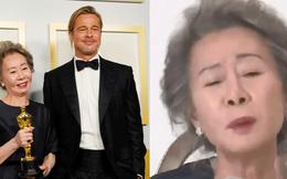 """Sao Hàn 74 tuổi lập kỳ tích ở Oscar gây bão với biểu cảm xéo xắt khi trả lời lại câu hỏi về Brad Pitt: """"Tôi có phải là chó đâu"""""""