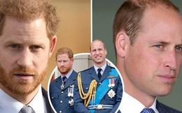 Anh em Hoàng tử William - Harry có quyết định đồng lòng đầu tiên sau khi hàng loạt rạn nứt bị phơi bày trên báo chí, kỳ vọng sẽ sớm hàn gắn?