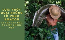 Thủy quái khổng lồ vùng Amazon có lớp vảy cứng như áo giáp chống đạn