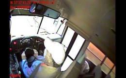 Video: Hươu chạy xuyên thủng kính xe buýt, tài xế và học sinh khiếp vía