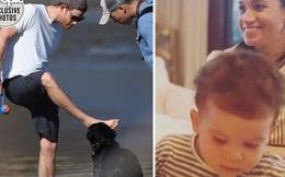 Harry lộ diện vui đùa cùng thú cưng trên bãi biển sau khi lên chức Giám đốc nhưng con trai Archie lại chiếm trọn spotlight với bức ảnh mới nhất