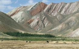 """Trung Quốc """"lo ngay ngáy"""" khi các sa mạc ở Tân Cương lần lượt được phủ xanh"""