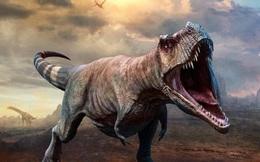 Giải mã 'cỗ máy nghiền xương' của khủng long bạo chúa
