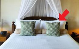 Vì sao giường khách sạn luôn đặt nhiều gối dù chỉ 1 người nằm? Có thể mọi người đều đã bỏ qua công dụng tuyệt vời của chúng