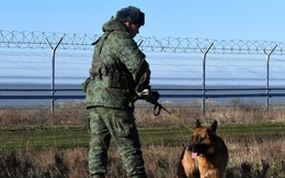 """Điện Kremlin trả lời về cáo buộc lính Nga """"đi lạc"""" sang Crimea năm 2014: Không có ai đi lạc hết!"""