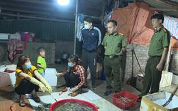 Bắt quả tang cơ sở bơm tạp chất vào tôm cho các nhà hàng Hà Nội, cứ 10kg tôm có 1,5kg tạp chất