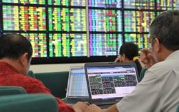 Kỷ lục chưa từng có: Nhà đầu tư trong nước mở mới 113.191 tài khoản chứng khoán trong tháng 3, bằng xấp xỉ 30% cả năm 2020