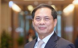 Tân Bộ trưởng Ngoại giao Bùi Thanh Sơn: 'Tôi rất tự hào, xúc động nhưng trách nhiệm sẽ rất nặng nề'