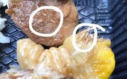 Khách tố thức ăn của 1 khách sạn cách ly Covid-19 ở Nha Trang có giòi bò lổm ngổm