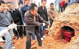 Lão nông đào được 'con lợn' quý, có người đòi trả giá cả căn nhà để đổi lấy nhưng ông không chịu -  Đây là thứ gì?