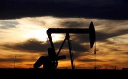 Giá dầu tăng 35%, OPEC vẫn dự báo nhu cầu bùng nổ