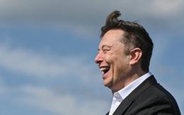 Elon Musk 'lật kèo', tuyên bố Tesla dừng chấp nhận thanh toán bằng Bitcoin, giá đồng tiền số lập tức cắm đầu lao dốc