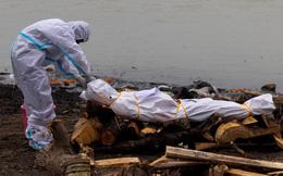 Hết thả trôi sông, Ấn Độ lại hoang mang phát hiện nhiều thi thể vùi trong cát, bị chó hoang cắn xé