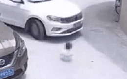 Bé gái ngồi giữa đường bị xe tông suýt chết, sự tình xảy ra trước đó khiến người người phẫn nộ