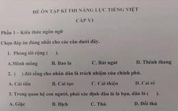 """Đề thi tiếng Việt tại Nhật Bản khiến thí sinh """"vò đầu bứt tai"""", tranh cãi không ngừng để tìm đáp án"""