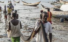 """Bị lên án vì """"bí mật"""" bán đất cho TQ, quan chức 1 nước châu Phi: Muốn phát triển thì phải có hy sinh"""