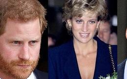 Hoàng tử William cùng em trai Harry đồng loạt lên tiếng chỉ trích cuộc phỏng vấn gian dối liên quan tới cái chết của Công nương Diana