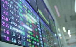 Ngân hàng, chứng khoán đồng loạt tăng vốn vì cổ phiếu 'được mùa'