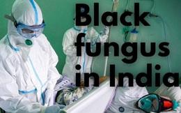 Bệnh mới khiến ngàn người Ấn Độ phải bỏ một mắt có lan ra thế giới?