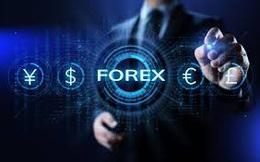 Công an TPHCM cảnh báo tội phạm lợi dụng không gian mạng kinh doanh ngoại hối (Forex) trái phép