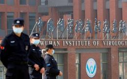 Việt Nam lên tiếng việc WHO tiếp tục điều tra nguồn gốc Covid-19