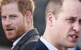 Hoàng tử William đưa ra chia sẻ đầy thâm sâu sau màn chỉ trích gia đình thậm tệ của em trai