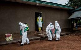 Cái chết đen trở lại tấn công người dân DRC, bệnh nhân thổ huyết trước khi chết