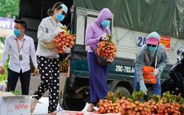 Đội nắng, xếp hàng mua vải ủng hộ nông dân Bắc Giang