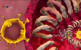 Biến chủng mới có thể 'cắm' vào bất cứ nơi nào trong cơ thể, lây lan nhanh và nguy hiểm hơn
