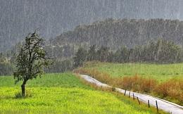 Bắc bộ có mưa lớn, cảnh báo lốc, mưa đá