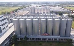 Bia Sài Gòn bị thu hẹp thị phần vì bán bia bình dân?