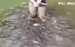 Người phụ nữ bỏ đói đàn cá răng đao liên tục 5 ngày rồi táo bạo nhảy xuống ao, cảnh tượng sau đó khiến người ta kinh ngạc