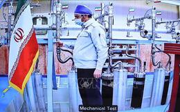 IAEA: Kho dự trữ urani được làm giàu của Iran cao gấp 16 lần quy định